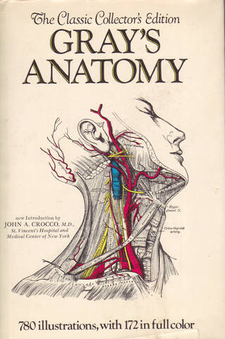 About The Open Anatomy Project